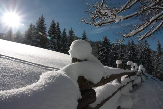 Mit den Schneeschuhen in die herrliche Winterwelt von Filzmoos